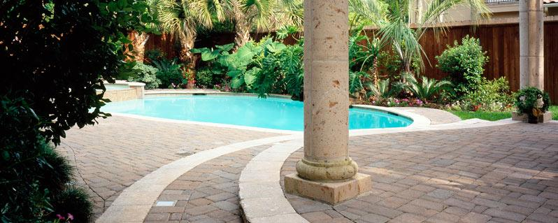 The best plants to choose around your pool